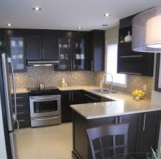 wonderful design ideas small contemporary kitchens design ideas