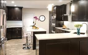 Kitchen No Cabinets Know Why Fabuwood Cabinets Are The Best For Your Kitchen In