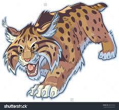 jaguar clipart wild cat clipart explore pictures