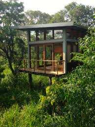 a glass house in the sri lankan jungle skywithlemon stories