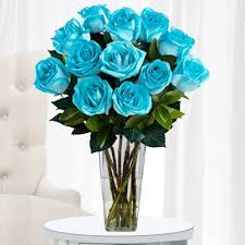 teal roses a unique flowers delivery made up of bright aquamarine roses will