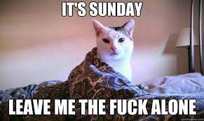 Sleepy Cat Meme - it s sunday leave me the fuck alone sleepy cat quickmeme