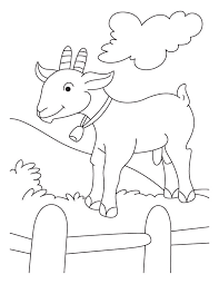 free coloring pages goats mountain goat coloring pages fair coloring contest pinterest
