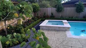 backyard designs with pool and outdoor kitchen 3d pools u0026 landscape landscape design swimming pool installation
