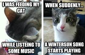 Happy Cat Meme - i was feeding my cat while listeing to some music when suddenly