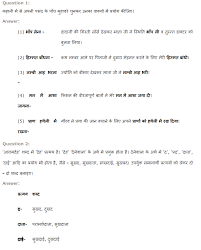 ncert solutions for class 8th hindi chapter 17 ब ज और