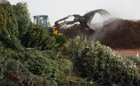 city to open christmas tree recycling drop off locations san