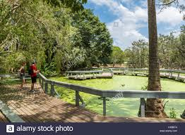 Bundaberg Botanic Gardens Visitors Exploring A Boardwalk Overlooking Lakes In The Bundaberg