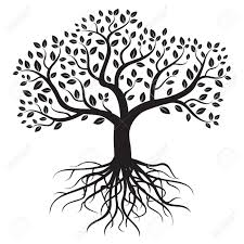 vector tree with roots and leafs royalty free cliparts vectors