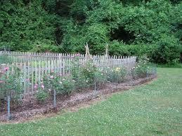 vegetable garden fence ideas homes gallery