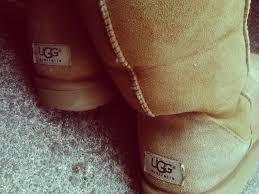 womens ugg knightsbridge boots 29 best ugg images on uggs ugg boots and gifts