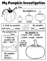 orange pumpkin orange pumpkin