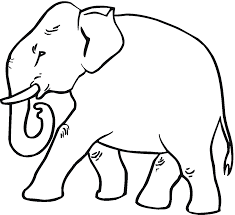 special elephants coloring pages top coloring 8853 unknown