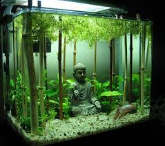 Home Aquarium Decorations The World U0027s Top 10 Best Themed Fish Tanks Http Theverybesttop10