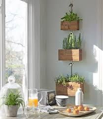 Hanging Wall Planter 144 Best Hanging Wall Planters Images On Pinterest Gardening
