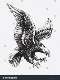 swooping eagle stock vector 56052058 shutterstock