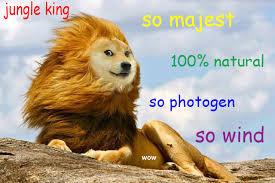 Original Doge Meme - how memes spread on facebook