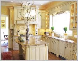 Houzz Kitchen Backsplash Ideas Houzz Kitchen Backsplash Tile Ctpaz Home Solutions 28 Jan 18 13