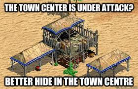 age of empires 2 villager logic geekiness and fun things