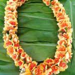 flower leis ilima flower aloha hawaiian flowers hawaiian flower