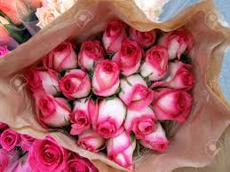 big bouquet of roses big bouquet of pink roses stock photo picture and