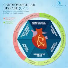 100 physical therapy for cardiovascular disorders physical