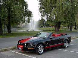 Mustang Red And Black Picture Of Black Stang With Red Rocker Stripes The Mustang