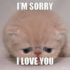 I Am Sorry Meme - im sorry i love you jpg funny touching meaningful quotes