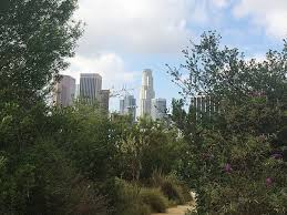 native plants los angeles mapping la u0027s most overlooked and underrated public parks vista