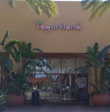 yogurtland on we are open thanksgiving day from 11am to
