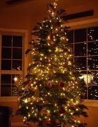 o tree part 2