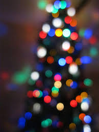 colored christmas tree lights free images light number color evergreen blue lighting