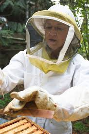 in the moment a day in the life of a backyard beekeeper