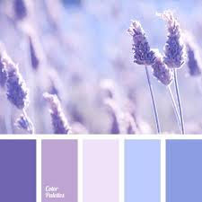 Purple Color Shades Best 25 Lavender Color Scheme Ideas On Pinterest Purple Palette
