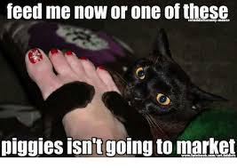 Feed Me Meme - feed me now or one of these piggies isntgoing to market meme on