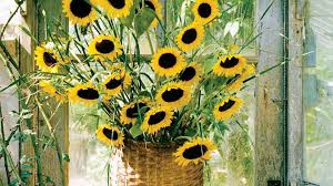 sunflower arrangements here comes the sun and sunflower arrangements flower magazine