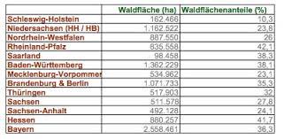größte stadt deutschlands fläche waldflaechen bundeslaender jpg