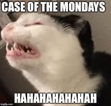 Mondays Meme - mondays memes imgflip