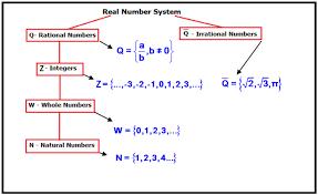 real number worksheet worksheets