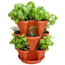 Indoor Herb Garden Ideas by Indoor Herb Garden Ideas Mr Stacky