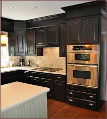 Modern Kitchen Cabinets Colors Kitchen Cabinet Design Ideas Pleasing Design Modern Oven