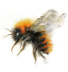 best 25 bumble bee illustration ideas on pinterest bee drawing