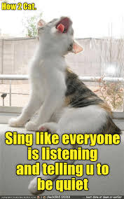 Memes And Funny Pics - lolcats lol at funny cat memes funny cat pictures with words