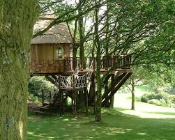 lake district tree house blue forest treehouses