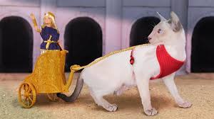 3ders org 3d printed cat chariot stylish
