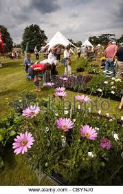 home u0026 garden show plant stock photo royalty free image 16381596