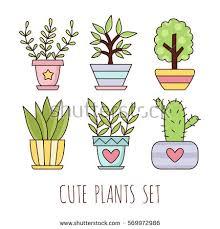 cute plant cute house plants pots vector illustration stock vector 569972986