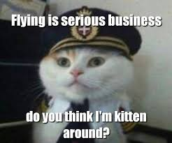 Flying Cat Meme - pilot cat meme by supertoon357 on deviantart