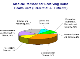 high resolution nursing home care plans 10 home care plan personal care home care