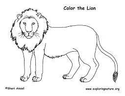 drawn lion mammal pencil color drawn lion mammal